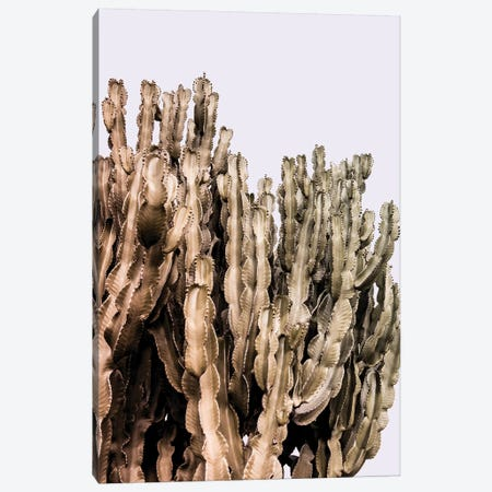 Metal Cactus Canvas Print #BLI58} by Beli Canvas Print