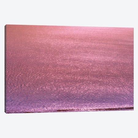 Metallic Ocean With Iridescent Wave Canvas Print #BLI59} by Beli Canvas Art Print