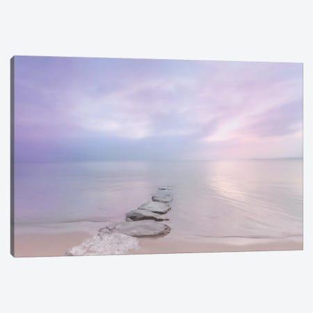 Morning Light Canvas Print #BLI61} by Beli Canvas Art