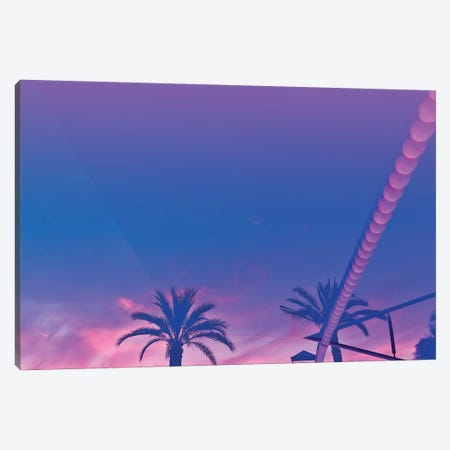 Palms And Sunset With Reverberation Canvas Print #BLI69} by Beli Canvas Art
