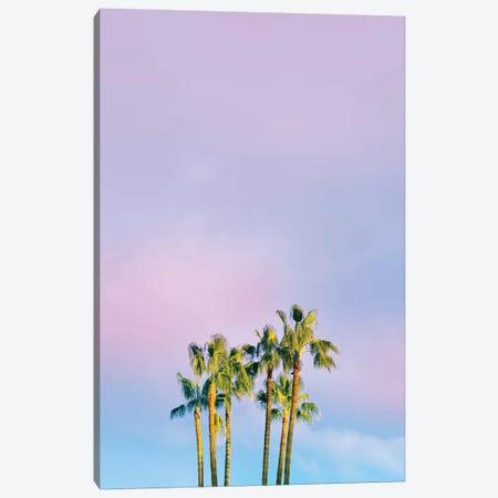 Summer Dreams With Palms Canvas Print #BLI89} by Beli Canvas Art