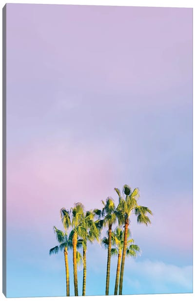 Summer Dreams With Palms Canvas Art Print