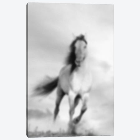 Blurred Étalon Canvas Print #BLM12} by 5by5collective Art Print