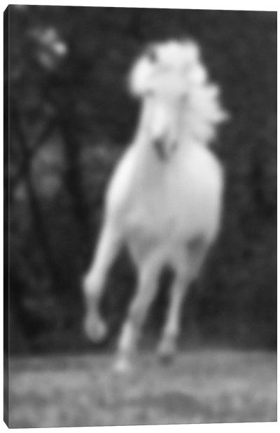 Blurred Galopeur Canvas Art Print