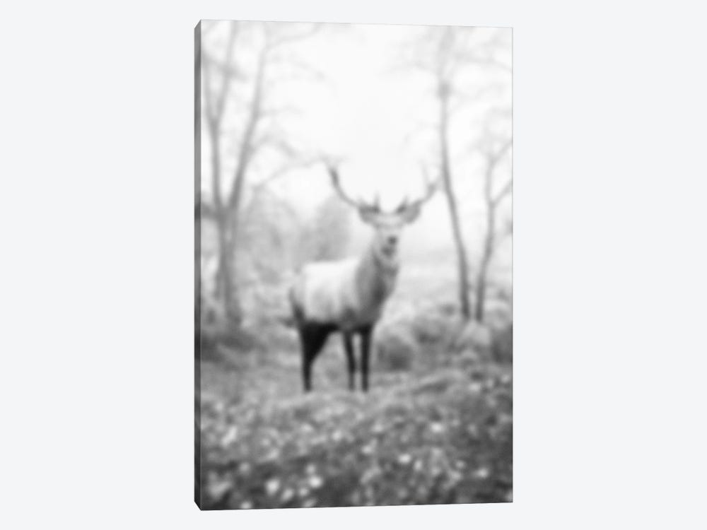 Blurred Le Cerf 1-piece Canvas Print