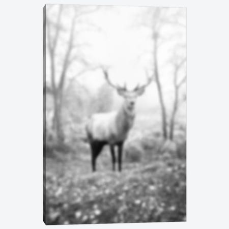 Blurred Le Cerf Canvas Print #BLM16} by 5by5collective Canvas Artwork