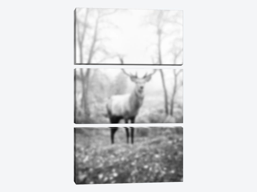 Blurred Le Cerf by 5by5collective 3-piece Canvas Art Print