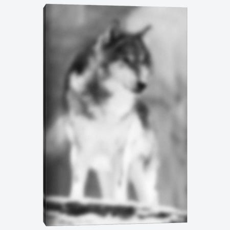 Blurred Loup Canvas Print #BLM17} by 5by5collective Canvas Artwork
