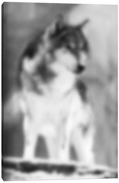 Blurred Loup Canvas Art Print