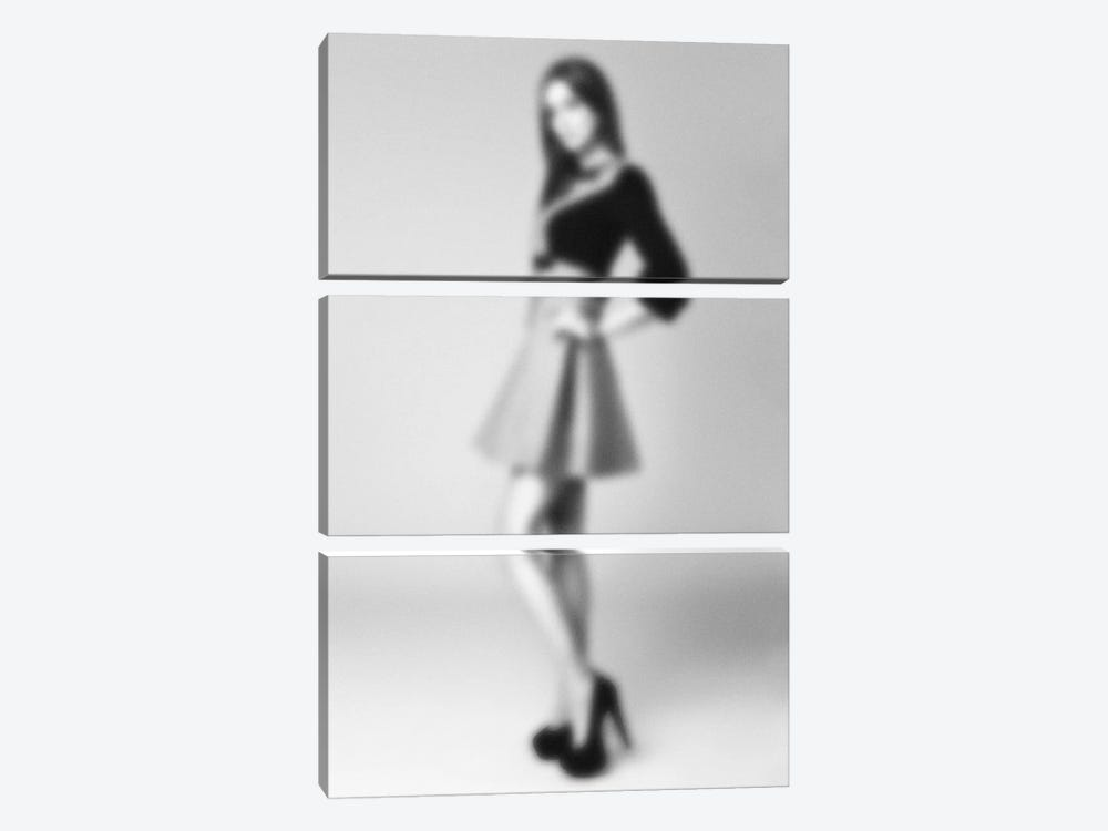 Blurred Bianca by 5by5collective 3-piece Canvas Art Print