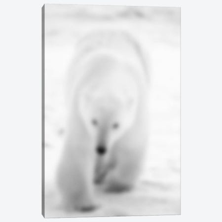 Blurred Blanc Canvas Print #BLM4} by 5by5collective Canvas Wall Art