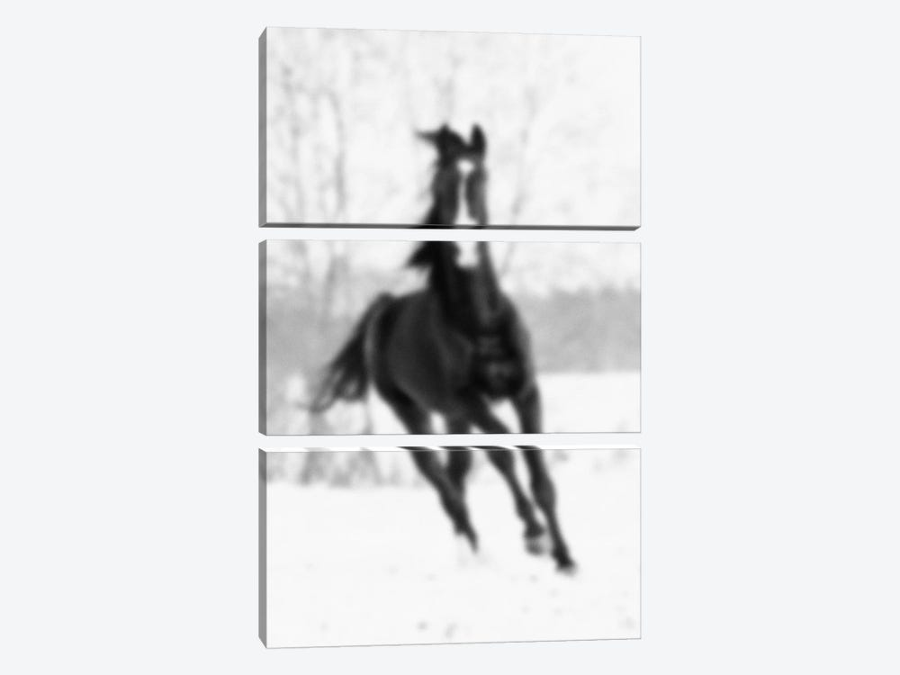Blurred Cheval by 5by5collective 3-piece Canvas Artwork