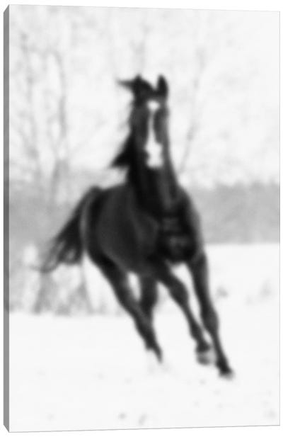 Blurred Cheval Canvas Art Print