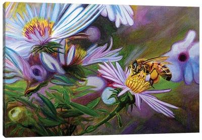 Nature Itself Canvas Art Print