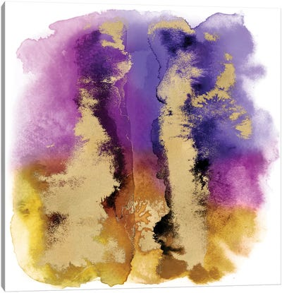 Magical Mist with Gold I Canvas Art Print