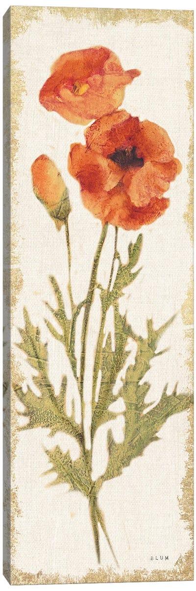 Poppy Panel Light Canvas Art Print
