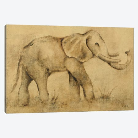 Global Elephant Light Canvas Print #BLU2} by Cheri Blum Canvas Art