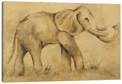Global Elephant Light Canvas Art Print