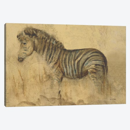 Global Zebra Light Canvas Print #BLU5} by Cheri Blum Canvas Art Print