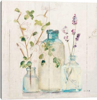 Blossoms V Light Canvas Art Print