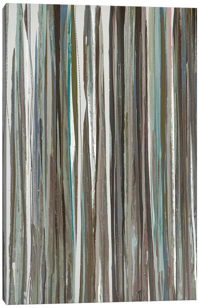 Cool Stripes Canvas Print #BLY15