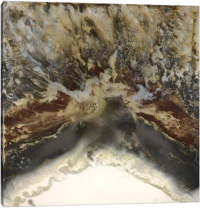 Terre United Canvas Art Print