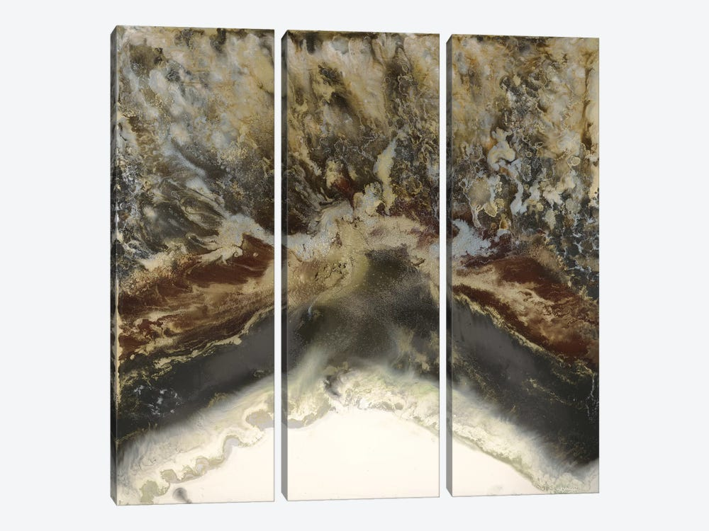 Terre United by Blakely Bering 3-piece Canvas Art Print