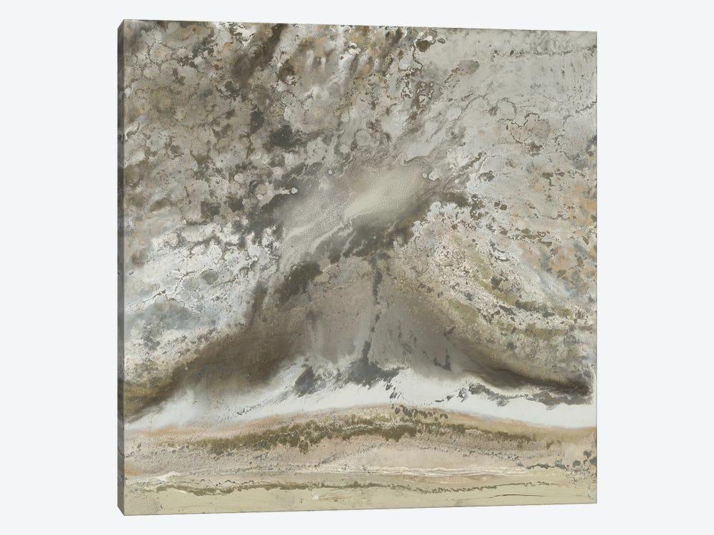 Calm Terrain by Blakely Bering 1-piece Canvas Wall Art