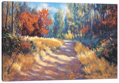 Early Autumn Trail Canvas Art Print