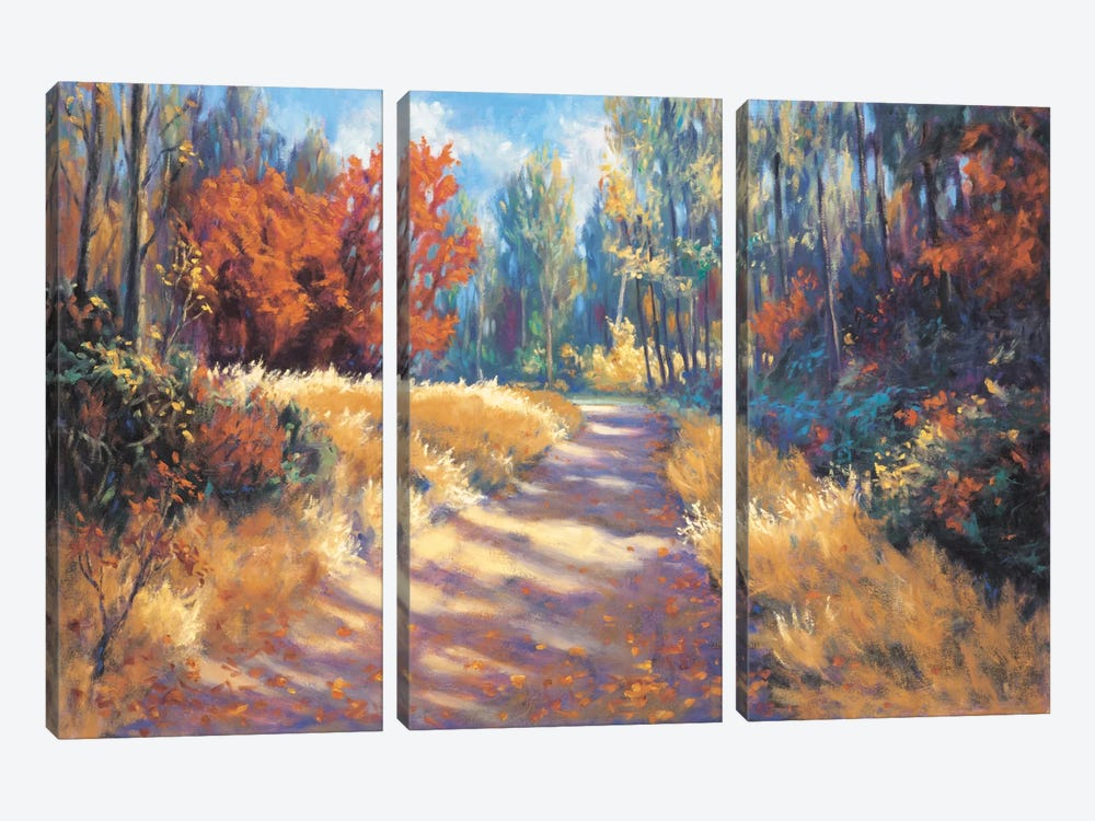 Early Autumn Trail by Bruce Mcadam 3-piece Canvas Art