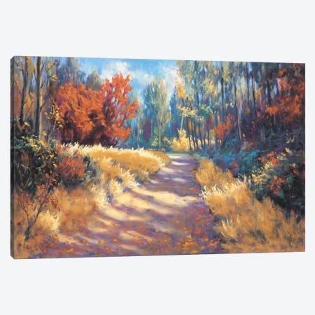 Early Autumn Trail Canvas Print #BMC1} by Bruce Mcadam Canvas Wall Art