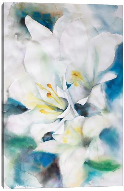 White Lillies Canvas Art Print