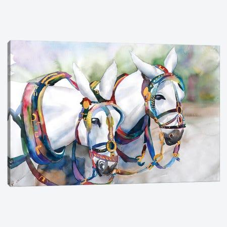 Big Mac Horses Canvas Print #BMD5} by Betsy McDaniel Canvas Wall Art