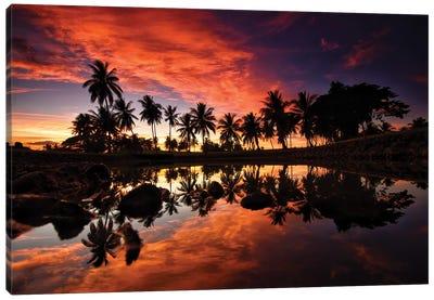Palm Tree Lake Canvas Art Print