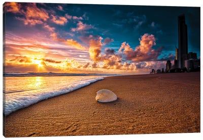 Beach Shell Canvas Art Print