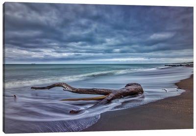 Ocean Log Canvas Art Print