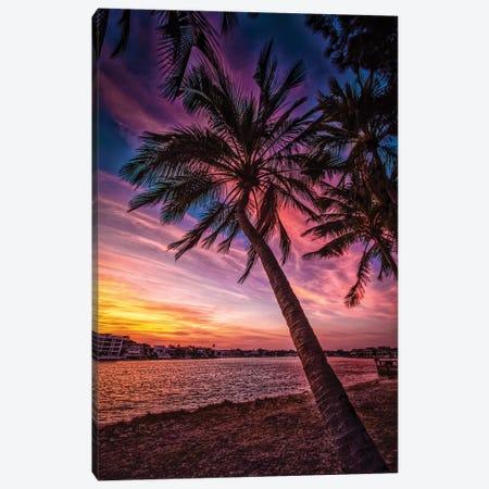 Sunset Palm Canvas Print #BML70} by Ben Mulder Art Print