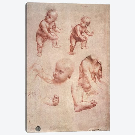 Study for the Infant Christ, c.1501-10  Canvas Print #BMN1002} by Leonardo da Vinci Canvas Wall Art