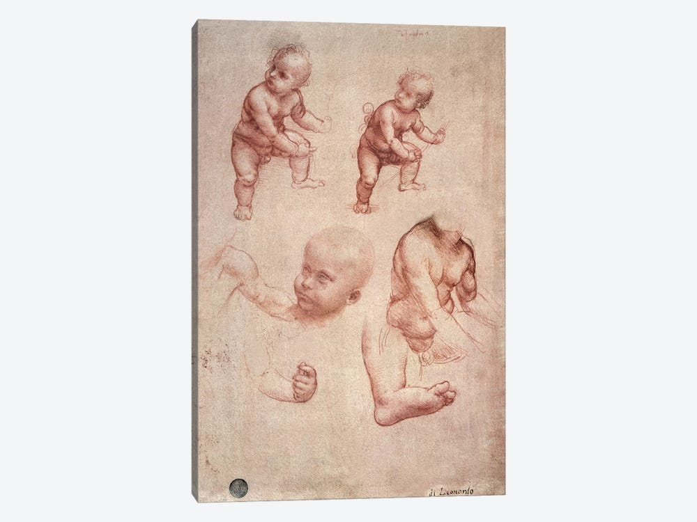 Study for the Infant Christ, c.1501-10  by Leonardo da Vinci 1-piece Canvas Art Print