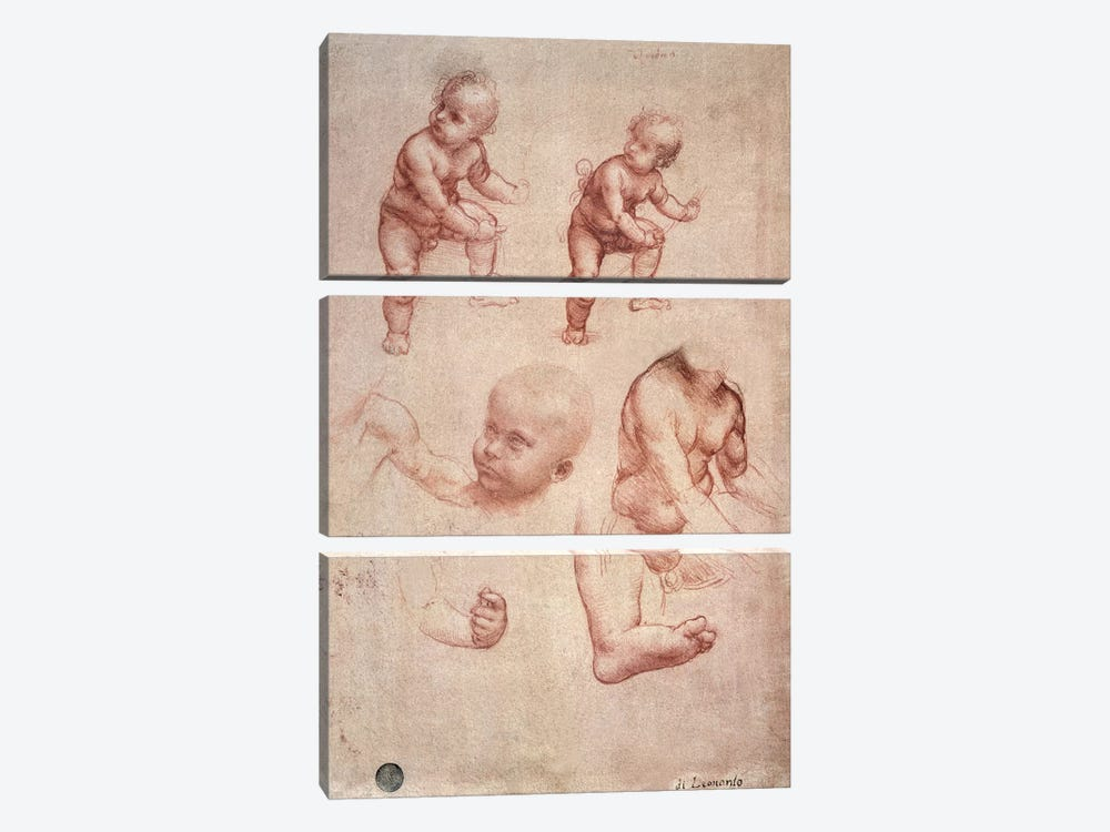 Study for the Infant Christ, c.1501-10  by Leonardo da Vinci 3-piece Canvas Print