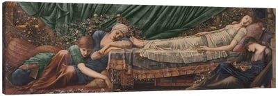 The Briar Rose' Series, 4: The Sleeping Beauty, 1870-90  Canvas Art Print