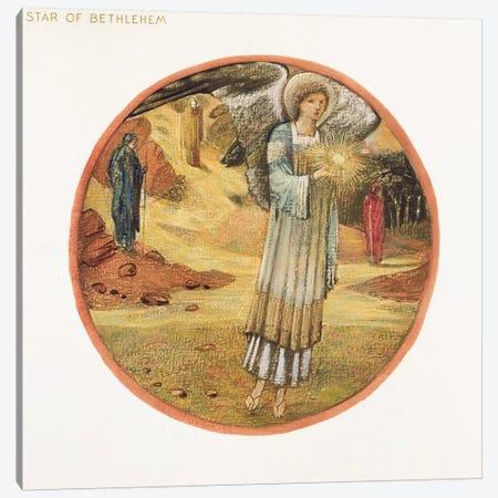 The Flower Book: WW. Star of Bethlehem, 1905  Canvas Print #BMN10070} by Edward Coley Burne-Jones Canvas Art