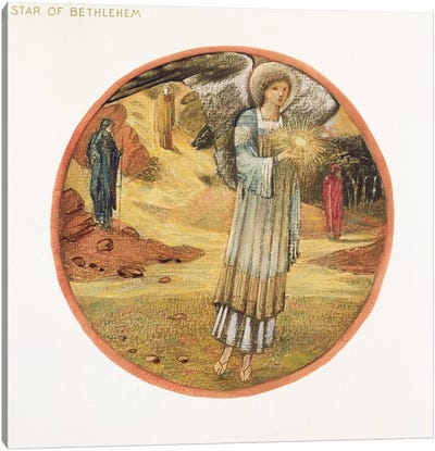 The Flower Book: WW. Star of Bethlehem, 1905  Canvas Art Print