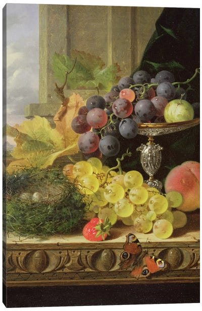 Still life of fruit, a tazza and a bird's nest Canvas Art Print