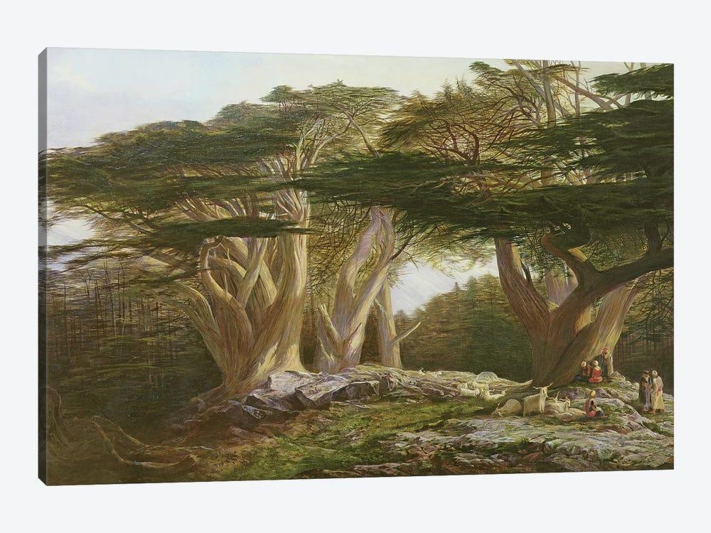 The Cedars of Lebanon, 1861  by Edward Lear 1-piece Canvas Print