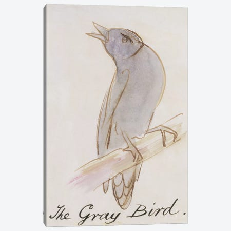The Gray Bird, from 'Sixteen Drawings of Comic Birds'  Canvas Print #BMN10129} by Edward Lear Canvas Wall Art