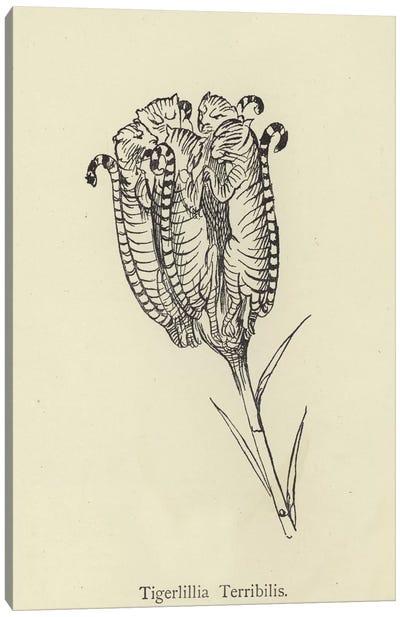 Tigerlillia Terribilis  Canvas Art Print