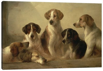 Hounds Canvas Art Print