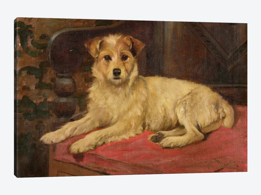 A Terrier on a Settee by Wright Barker 1-piece Canvas Print