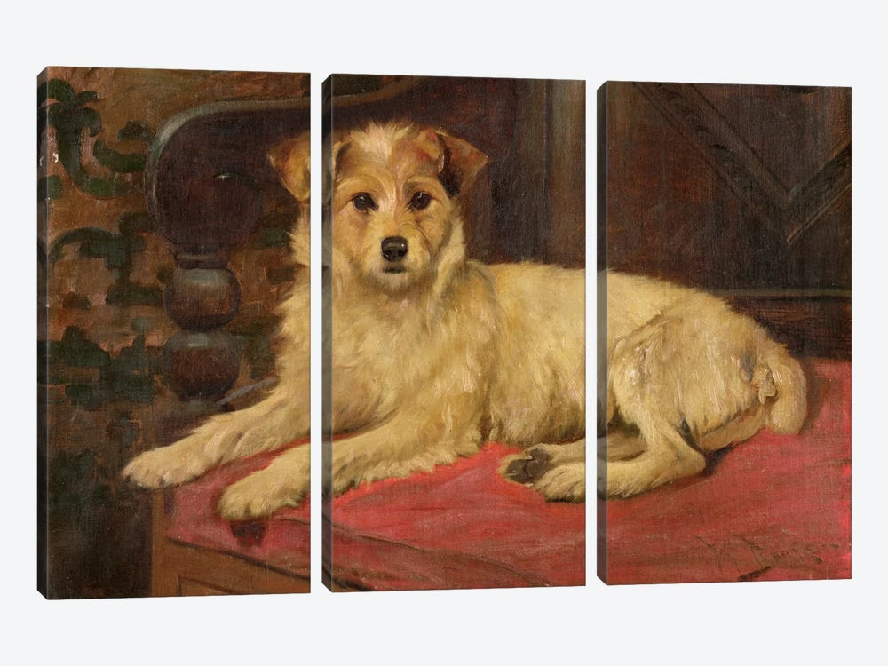 A Terrier on a Settee by Wright Barker 3-piece Canvas Print
